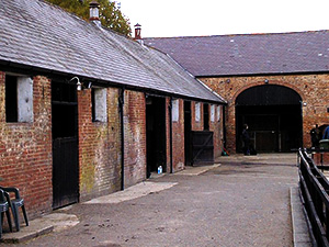 Livery Services At Ferry Farm Livery Yard Norwich Norfolk